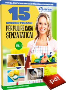 ebook-weclean-cover